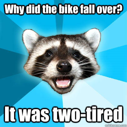 why did the bike fall over it was twotired - Lame Pun Coon