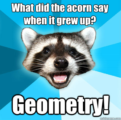 what did the acorn say when it grew up geometry - Lame Pun Coon