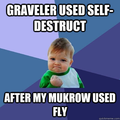 graveler used selfdestruct after my mukrow used fly - Success Kid