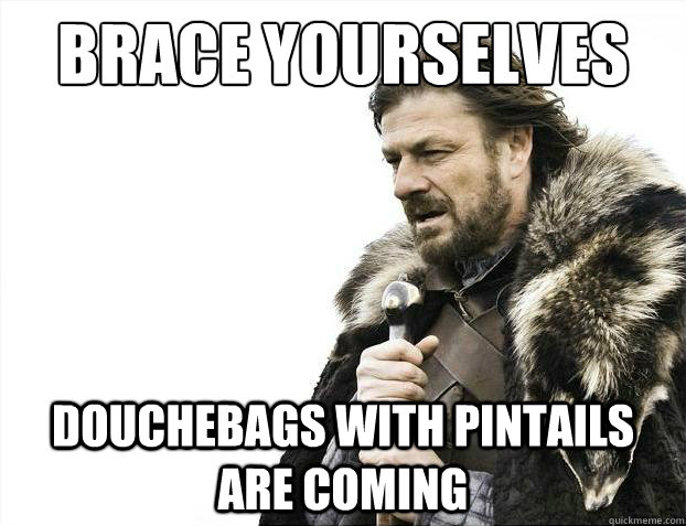 brace yourselves douchebags with pintails are coming - Brace Yourselves - Borimir