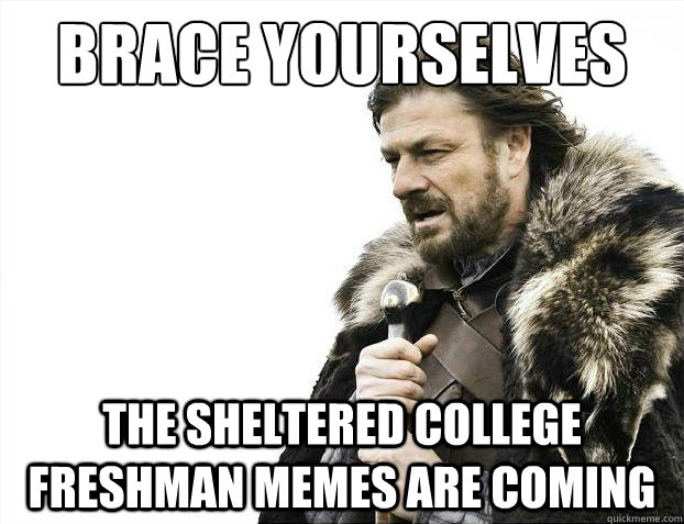 brace yourselves the sheltered college freshman memes are co - Brace Yourselves - Borimir