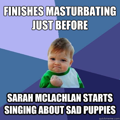 finishes masturbating just before sarah mclachlan starts sin - Success Kid