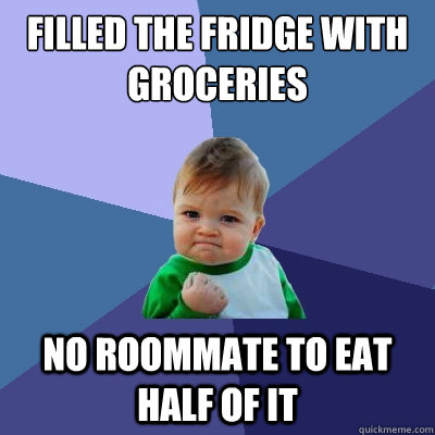 filled the fridge with groceries no roommate to eat half of  - Success Kid