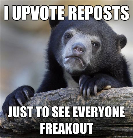 i upvote reposts just to see everyone freakout - Confession Bear
