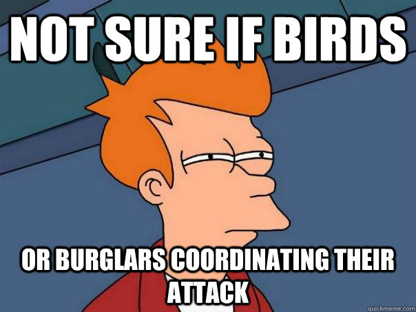 not sure if birds or burglars coordinating their attack - Futurama Fry