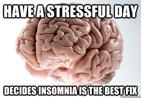 have a stressful day decides insomnia is the best fix - Scumbag Brain
