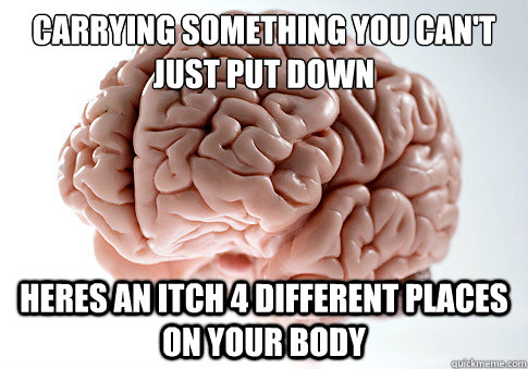 carrying something you cant just put down heres an itch 4 d - Scumbag Brain