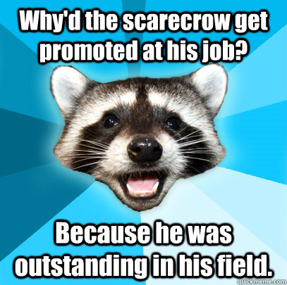 whyd the scarecrow get promoted at his job because he was  - Lame Pun Coon
