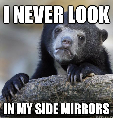 i never look in my side mirrors - Confession Bear