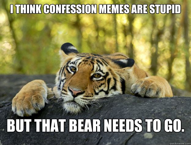 i think confession memes are stupid but that bear needs to g - Confession Tiger