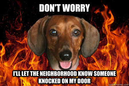 dont worry ill let the neighborhood know someone knocked o - Demonic Dachshund