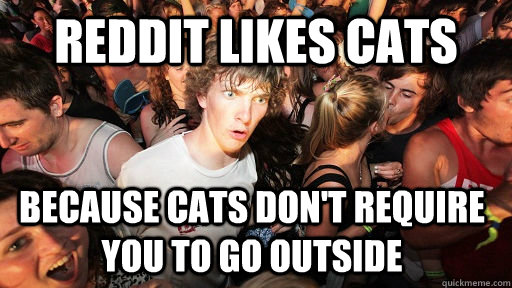 reddit likes cats because cats dont require you to go outsi - Sudden Clarity Clarence