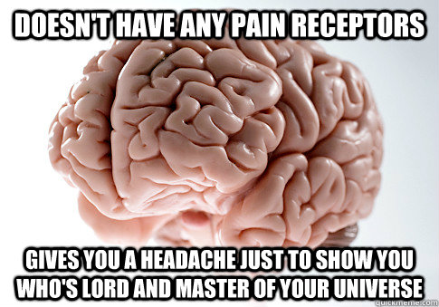 doesnt have any pain receptors gives you a headache just to - Scumbag Brain