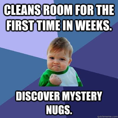 cleans room for the first time in weeks discover mystery nu - Success Kid