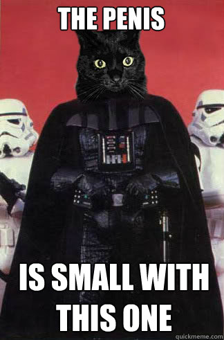 the penis is small with this one  - Darth Vader Cat