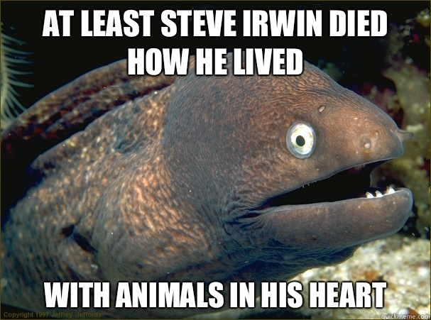 At least Steve Irwin died how he lived With animals in his h - Bad Joke Eel