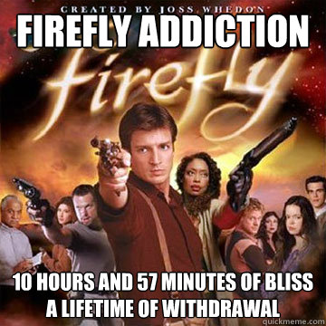 firefly addiction 10 hours and 57 minutes of bliss a lifetim - Firefly