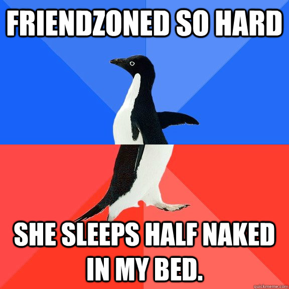 friendzoned so hard she sleeps half naked in my bed  - Socially Awkward Awesome Penguin