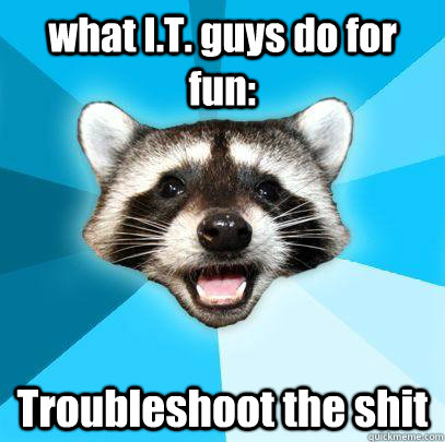 what it guys do for fun troubleshoot the shit - Lame Pun Coon Huck No