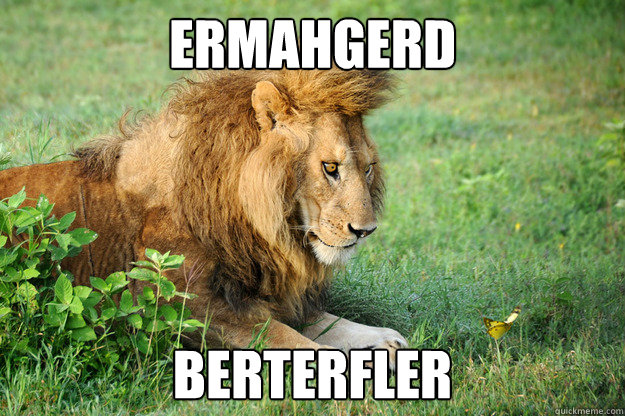 ermahgerd berterfler - ermahgerd berterfler