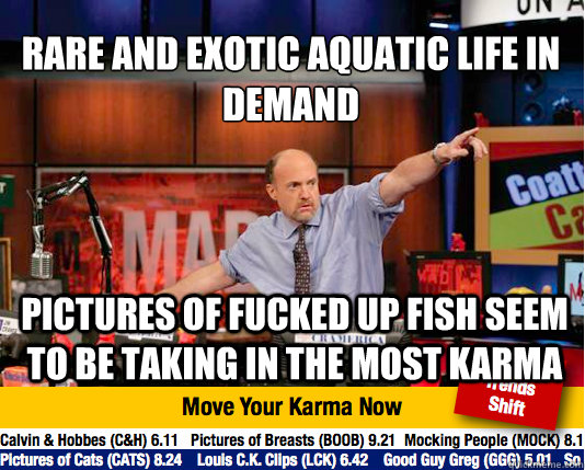 rare and exotic aquatic life in demand pictures of fucked u - Mad Karma with Jim Cramer