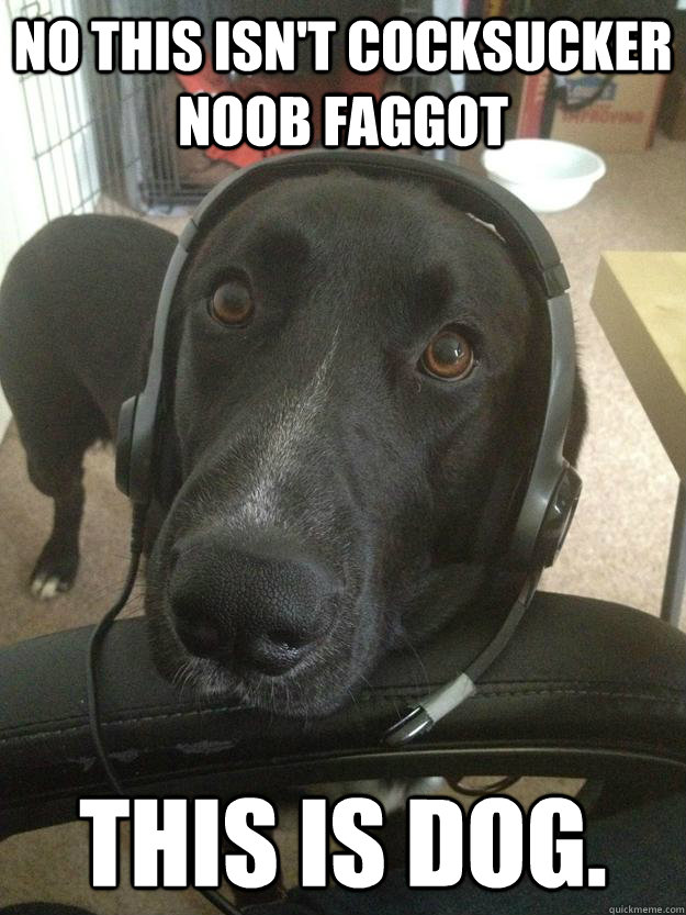 no this isnt cocksucker noob faggot this is dog -
