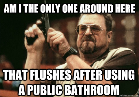 am i the only one around here that flushes after using a pub - Am I the only one