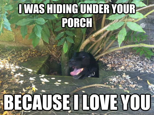 i was hiding under your porch because i love you -