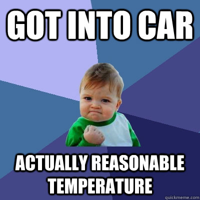 got into car actually reasonable temperature - Success Kid