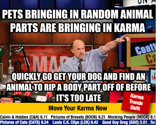 pets bringing in random animal parts are bringing in karma q - Mad Karma with Jim Cramer