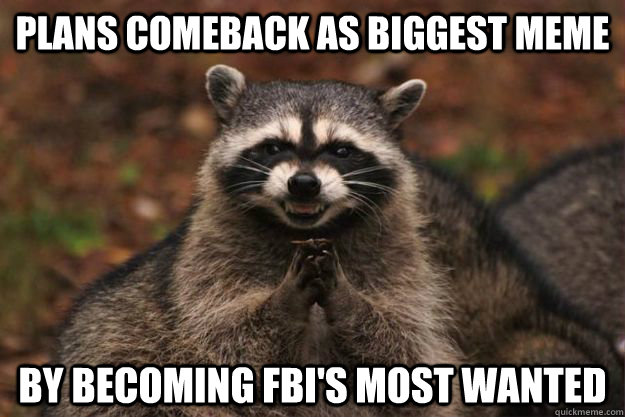 plans comeback as biggest meme by becoming fbis most wanted - Evil Plotting Raccoon