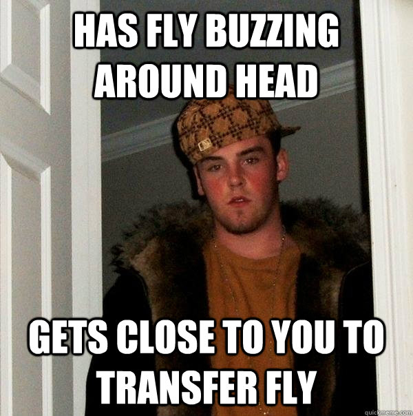 has fly buzzing around head gets close to you to transfer fl - Scumbag Steve