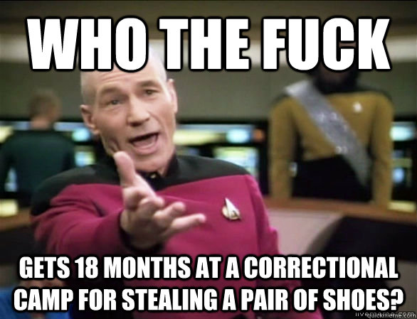 who the fuck gets 18 months at a correctional camp for steal - Annoyed Picard HD
