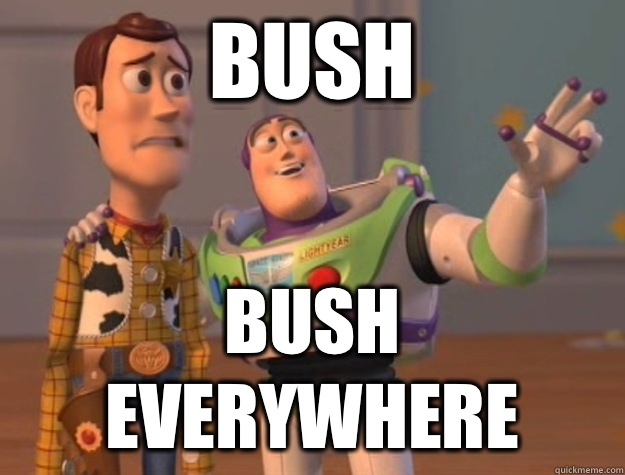 Bush Bush everywhere - Buzz Lightyear