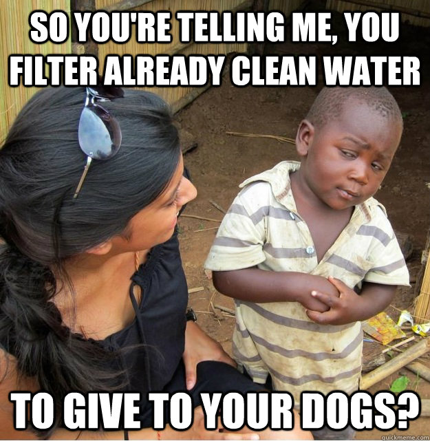 so youre telling me you filter already clean water to give - Skeptical Third World Kid