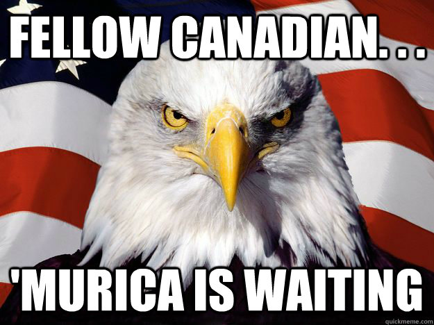 fellow canadian murica is waiting - One-up America