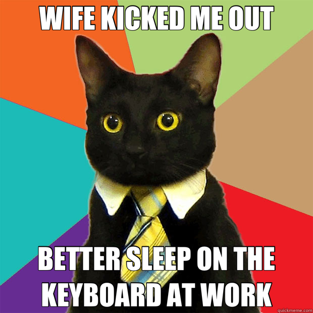 WIFE KICKED ME OUT BETTER SLEEP ON THE KEYBOARD AT WORK - Business Cat