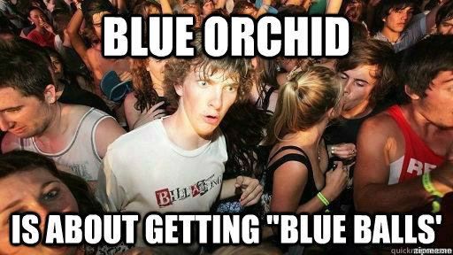 blue orchid is about getting blue balls - Suddenly Clarity Clarence