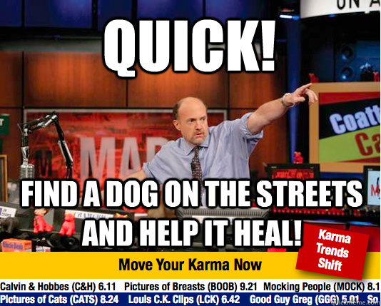 quick find a dog on the streets and help it heal - Mad Karma with Jim Cramer
