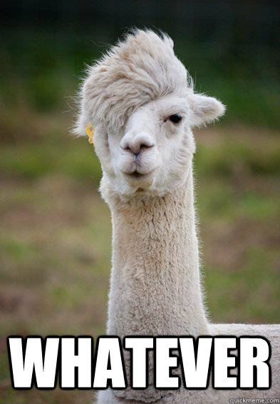 whatever   hipster llama   quickmeme