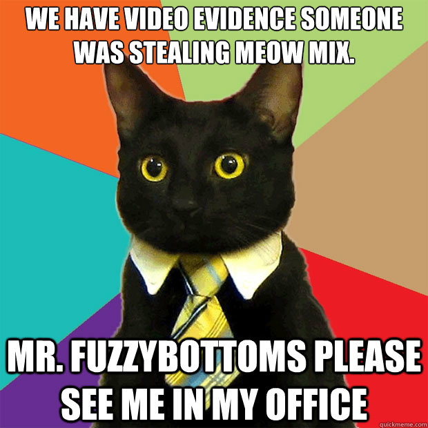we have video evidence someone was stealing meow mix mr fu - Business Cat