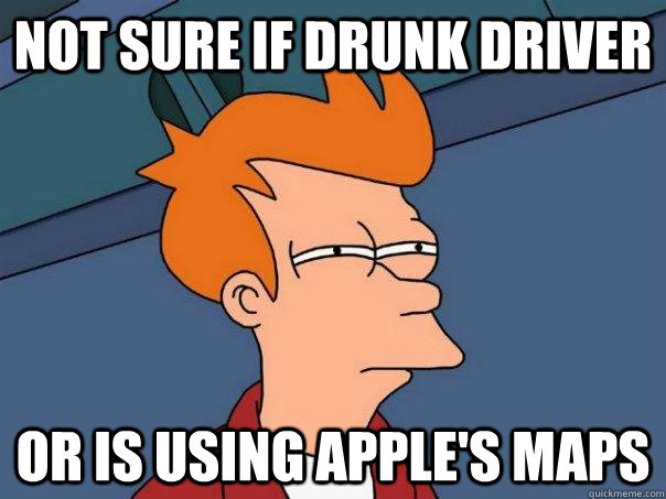 not sure if drunk driver or is using apples maps - Futurama Fry