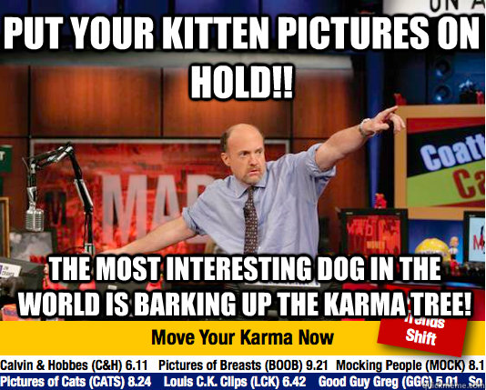 put your kitten pictures on hold the most interesting dog  - Mad Karma with Jim Cramer