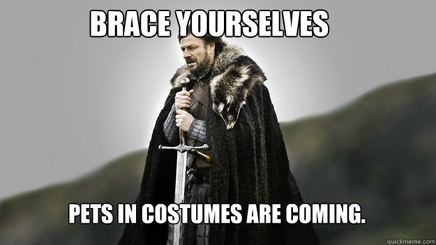 brace yourselves pets in costumes are coming - Ned stark winter is coming