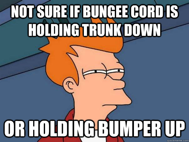 not sure if bungee cord is holding trunk down or holding bum - Futurama Fry