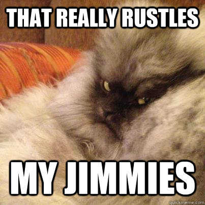 that really rustles my jimmies - 