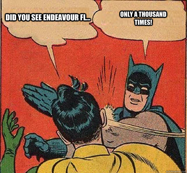 did you see endeavour fl only a thousand times - Batman and Robin