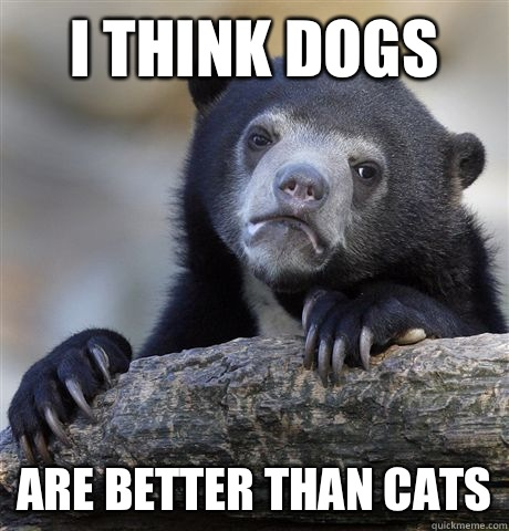 I think dogs Are better than cats - Confession Bear