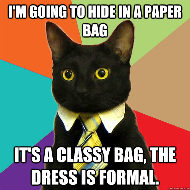 im going to hide in a paper bag its a classy bag the dres - Business Cat