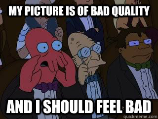 my picture is of bad quality and i should feel bad - Bad Zoidberg